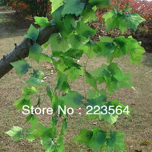 5pcs / lot 240 CM Artificial Silk Grapes Leaves Vines / Wedding Vine Plant Decoration / Home Courtyard Decorations