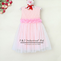 Wholesale 2014 Baby Girl Elegant Dresses For Girls Pink Chiffon And Cotton Little Girl Summer Dress Fashion Clothing E130412-4