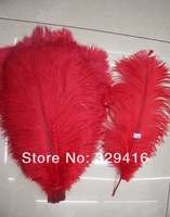50Pcs/Lot  Red High Quality Natural Ostrich Feathers 10-12 inch (25cm-30cm) Free Shipping