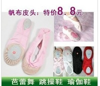 Cat sneakers shoes canvas tip ballet shoes practice shoes gym yoga