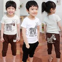 2013 summer boys clothing girls clothing baby child short-sleeve set tz-0661