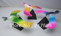 Free shipping magic balancing bird toy