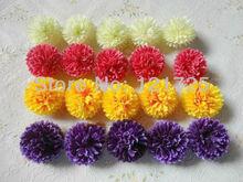 hydrangeas flower promotion