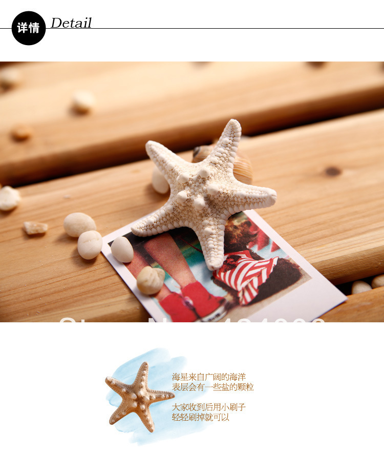 Hot sale!!1Forest natural true starfish on the beach hand hairpin ,Free Shipping,The seaside resort of essential!!(China (Mainland))