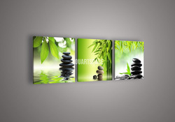 3 Piece Wall Art Botanical Feng Shui Green Picture Oil Painting On Canvas No Framework Abstract Print For Home Modern Decoration(China (Mainland))