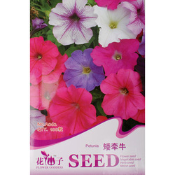Special price Balcony bonsai flower seeds petulantly seeds playmates petunia seeds(China (Mainland))