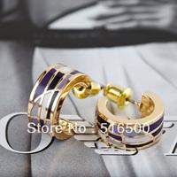 Free Shipping Hot Selling Zinc Alloy Enamel Jewelry Hoop Earring,Min1pair