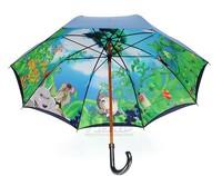 Free shipping Ghibli umbrella Hayao Miyazaki Totoro umbrella Ghibli Museum The anime Clear umbrella