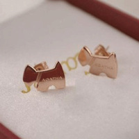 Agatha stud earring titanium stud earring 14k rose gold stud earring earrings accessories female