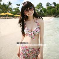 Bikini swimwear bikini swimwear bikini steel piece set swimwear female