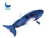 Free Shipping! Minke Whale 55cm Plush Toys Dolls large long Pillow Seat Cushion Backrest the stuffed toys for children