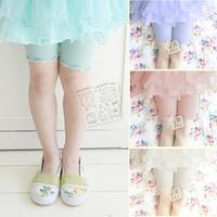 2013 summer the appendtiff laciness girls clothing baby child 5 kz-0691 legging
