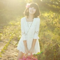 2013 spring women's summer women's lace one-piece dress chiffon one-piece dress
