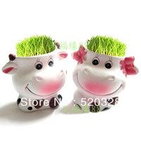 lovers cows cattle doll desktop green grass indoor plants bonsai