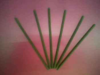 Article wormwood 45 0.8 5 120mm eye moxa stick