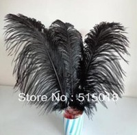 wholesale 50pcs/lot 15-20cm black Ostrich Feather Plume FREE SHIPPING wedding decoration