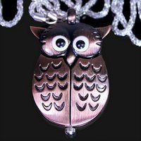 Free &amp;amp; Drop Shipping! New Fashion Brand Wonderful Owl Necklace Fob Pocket Pendant Metal Analog Quartz Watch with Chain.(China (Mainland))