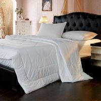 Quilt/ Hot Sale 100% Cotton Feather Velvet Double Quilt/Winter The Quilt/Size Size 180*220CM Quilt/Comforter Filling/ I006