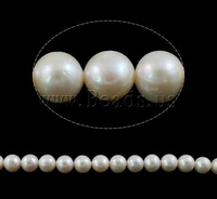 Free Shipping!! 15In/Lot  white Round Cultured Freshwater Pearl Beads AA grade 10mm DIY  Jewelry Accessories Wholesale 2013 NEW