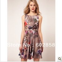 2013 new fashion printing Slim was thin dress CT7353