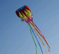 Free Shipping!!hot sale 5.5 m single Line Stunt color Octopus POWER Sport Kite!!!