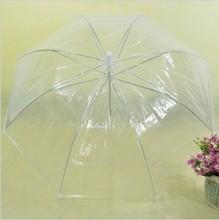 popular transparent folding umbrella