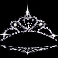 Bavin the bride hair accessory hair accessory rhinestone bling wedding jewellery accessories bridal accessories
