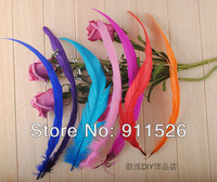 Free shipping Wholesale 100pcs a lot 12-14inches/30-35cm Multi-Colors Dyeing Loose Rooster Tail Feathers For Dress/Hats Trims