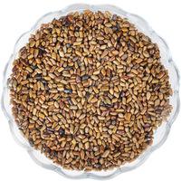 Herbal tea cassia arbitraging cassia seed tea premium 100 bags bulk