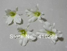 cheap orchid flower