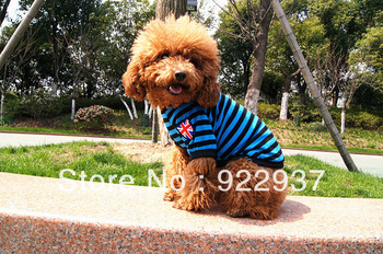 wholesale Pet clothes VIP than bear dog clothes vest T-shirt teddy clothes summer reporting center Free shipping