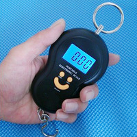 Portable said portable fishing scales express scale gourd portable hanging scale mini electronic scales