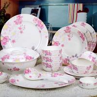 Chinaware dinnerware set avowedly 56 gift bone china dishes glaciomarine