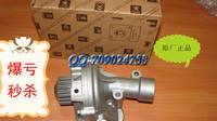 Sega peugeot triumph c5 picasso 2.0 sienna water pump assembly