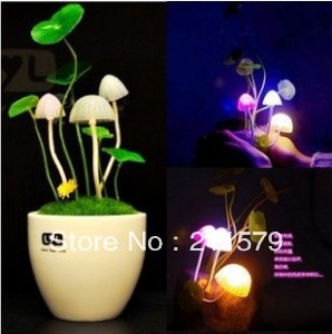 Free shipping 1pc/lot switchable induction bonsai mushroom lamp with ceramic(China (Mainland))