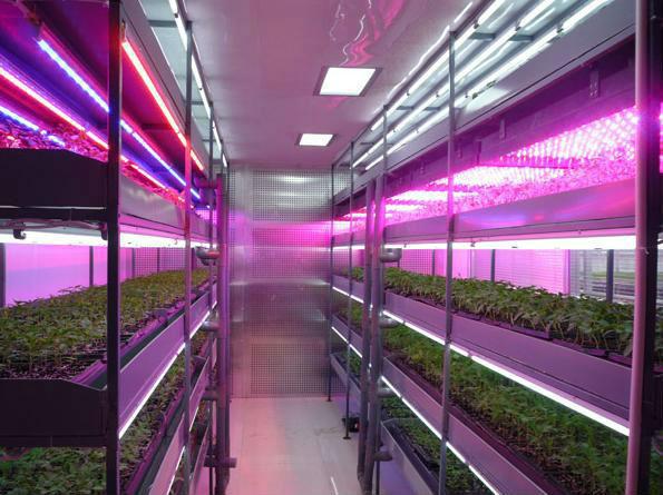 Led tubo crescer tubo de luz , 20w G13 O- Forma com vermelho azul cor branco melhor para cultivo de plantas e flor(China (Mainland))