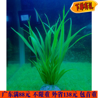 Plants artificial plants fish tank plastic plants green Medium