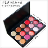 Hot Sell Coastal Scents 15 Colors Multifunctional Makeup Palette/cosmetics palette Concealer + Lipstick/Lip Gloss free shipping