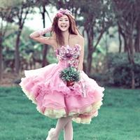 wholesales Lovers clothes costume pink short skirt theme wedding 8 - 344  photograph studio