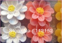 Free shipping wholesale mix six color 60pairs resin cameo cabochon stud earring