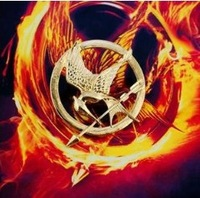 20%off free-shipping 2013 The Hunger Games Brooch/pin, vintage brooch,2colors HUNGER GAMES Pin 4pcs/lot