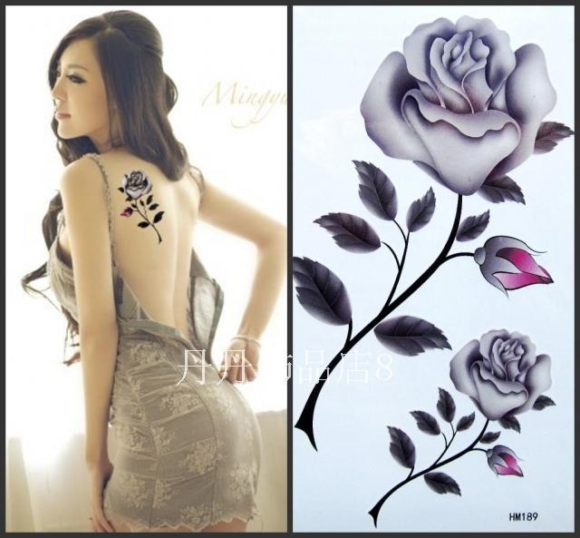 Big Roses Drawings Rose Big Sexy Hm189 38