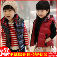 5pcs/lots Thickening quilted shiny side zipper hooded vest children vest jacket for boys and girls waistcoats c0064