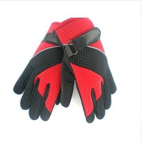 Free shipping /Honeycomb cloth thermal gloves ride gloves motorcycle gloves winter gloves ride gloves 02