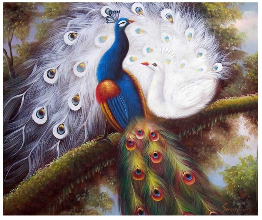 Online kopen wholesale kleurrijke pauw tuin uit china kleurrijke pauw tuin groothandel - Corridor schilderen ...