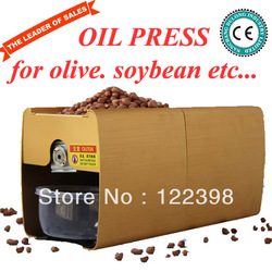 automatic cheap mini olive cold press oil machine for sale DL-ZYJ02 CE approved(China (Mainland))
