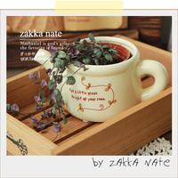Zakka kettle flower flower pot teapot shower