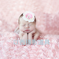 Free shipping New arrival fashion rose big single blanket props photo props mat