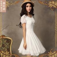 Chiffon dress chiffon dress mini chiffon dress woman