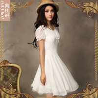 Chiffon dress chiffon skirt mini chiffon dress woman